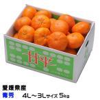 (送料無料)   JAえひめ中央(中島産) 『甘平』 かんぺい (青秀)  特大玉 4L〜3Lサイズ (約5.0kg) カンペイ みかん