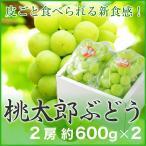 桃太郎ぶどう 岡山県産 香川県産 赤秀 約600g×2房 送料無料 ぶどう 葡萄 ブドウ