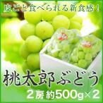 ぶどう 桃太郎ぶどう 赤秀 約500g×2房 岡山県産 香川県産 夏ギフト 葡萄 ブドウ
