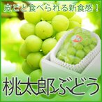 ぶどう 桃太郎ぶどう 青秀 約900g x 1房 岡山県産 香川県産 夏ギフト 葡萄 ブドウ