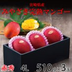 マンゴー みやざき完熟マンゴー 赤秀 4Lサイズ 510g以上×3玉 宮崎県産 送料無料 母の日 父の日 プレゼント