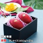 マンゴー みやざき完熟マンゴー 赤秀 3Lサイズ 450g以上×2玉 宮崎県産 送料無料 母の日 父の日 プレゼント