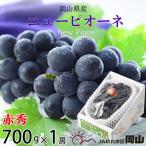 ぶどう ニューピオーネ 赤秀 700g×1房 岡山県産 JAおかやま  送料無料 お中元 夏ギフト 葡萄 ブドウ