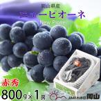 ぶどう ニューピオーネ 赤秀 約800g×1房 岡山県産 JAおかやま 葡萄 ブドウ
