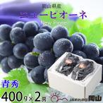 ぶどう ニューピオーネ 青秀 400g×2房 岡山県産 JAおかやま  送料無料  ギフト お中元  葡萄 ブドウ