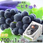 ニューピオーネ 岡山県産 JAおかやま 特秀 700g×1房 送料無料 ぶどう 葡萄 ブドウ