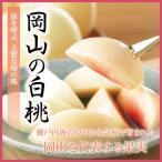岡山白桃 岡山県産 ロイヤル 5〜10玉 2kg お中元 ギフト 送料無料 もも モモ はくとう 白桃 桃
