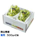 シャインマスカット 晴王 岡山県産 JAおかやま 青秀 500gx2房 ギフト 送料無料 ぶどう 葡萄 ブドウ