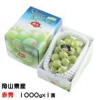 ぶどう シャインマスカット 晴王 赤秀 1000g×1房 岡山県産 JAおかやま 葡萄 ブドウ