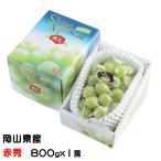 ぶどう シャインマスカット 晴王 赤秀 約800g×1房 岡山県産 JAおかやま 葡萄 ブドウ