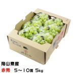 シャインマスカット  晴王  岡山県産 JAおかやま 赤秀 5〜8房 約5kg 送料無料  ギフト  ぶどう 葡萄 ブドウ