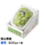 ぶどう シャインマスカット 晴王 青秀 600gx1房 岡山県産 JAおかやま  葡萄 ブドウ