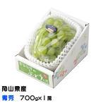 ぶどう シャインマスカット 晴王 青秀 700gx1房 岡山県産 JAおかやま 葡萄 ブドウ