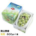 ぶどう シャインマスカット 晴王 特秀 600gx1房 岡山県産 JAおかやま 葡萄 ブドウ