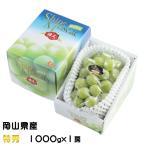 ぶどう シャインマスカット 晴王 特秀 1000gx1房 岡山県産 JAおかやま 葡萄 ブドウ