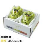シャインマスカット 晴王 岡山県産 JAおかやま 特秀 400gx2房 ギフト 送料無料 ぶどう 葡萄 ブドウ