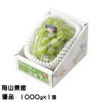 ぶどう シャインマスカット 晴王 優品 1000gx1房 岡山県産 JAおかやま 葡萄 ブドウ