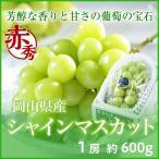 シャインマスカット 岡山県産  赤秀  1房 約600g 化粧箱入り  ギフト 送料無料 葡萄 ぶどう ブドウ