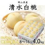 清水白桃 岡山県産 ロイヤル 9〜16玉 4kg お歳暮 お中元 ギフト 送料無料 もも モモ はくとう 白桃 桃