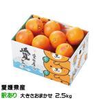 みかん タロッコオレンジ ブラッドオレンジ 風のいたずら 訳あり 大きさおまかせ みきゃん箱入り 2.5kg 愛媛県  ミカン 蜜柑
