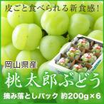 桃太郎ぶどう 岡山県産 香川県産  詰み落とし 約200g×6パック 送料無料 ぶどう 葡萄 ブドウ