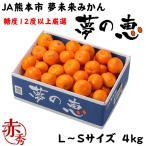夢の恵 プレミアムみかん JA熊本市  赤秀 L〜Sサイズ 約5kg お歳暮 ギフト 送料無料 蜜柑 ミカン