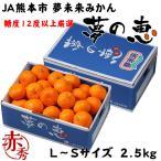 みかん 夢の恵 プレミアムみかん糖度12度以上 赤秀 L〜Sサイズ 2.5kg JA熊本市 夢未来 蜜柑 ミカン