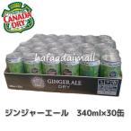 コストコ カナダドライ ジンジャーエール 350ml×30缶 炭酸飲料 カークランド 飲料