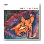 BRIGID MAE POWER / S.T. (LP)