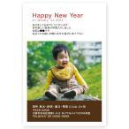 写真入り 年賀状  私製年賀はがき 10枚  NBS-04 出産報告も可 年賀状 印刷 2021 うし 丑年