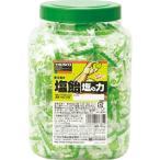 TRUSCO 塩飴 塩の力 750g 青梅味 ボトルタイプ TNU-750 ( TNU750 )