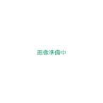 工進 高圧洗浄機 エンジン式 JCE-1510UK