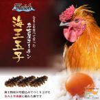 名古屋コーチン 卵 30個入り 送料無料 海王玉子 カイオウタマゴ 高級卵