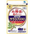 小林製薬 サラシア100 60粒 約20日分 食後の血糖値が高めの方に