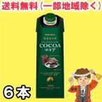 守山乳業 ココア 喫茶店の味 1000ml紙パック×6本入 【発送重量 5kg】codeB1