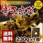 辛子高菜 230g×1袋 博多 送料無料 ポイント消化 500円