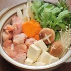 水炊 博多水炊き 4〜5人 無添加スープ 地鶏水炊き