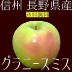 りんご グラニースミス 約3kg 信州 長野県産 2019年収穫 期間限定