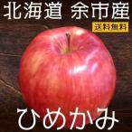 りんご ひめかみ 約5kg 北海道 余市産 2018年収穫 期間限定 蜜入り 希少品種