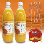 愛媛県宇和島産 なんかんまるしぼり みかんジュース 1000ml瓶 2本セット  南柑20号みかん100%ストレート 温州ミカンジュース