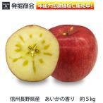りんご あいかの香り 約5kg 信州 長野県産 2019年収穫 期間限定