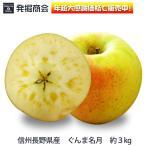 2016年 期間限定 りんご【信州 長野県産 ぐんま名月】約3kg(ご家庭用)