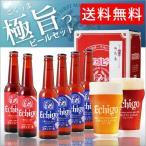 お中元 2018 プレゼント ギフト 送料無料 ビール 飲み比べセット 地ビール 6本 クラフト ビール 詰め合わせ エチゴビール