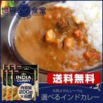 選べる カレー 6食 セット インドカレー レトルト (レトルト食品) メール便 送料無料  1000円 ポッキリ セール