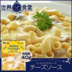 フィルマ チーズソース 40g パスタソース