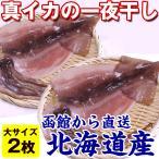 イカ一夜干し いか 干物 ) イカの一夜干し 大×2枚(180g前後×2) 北海道産 真いか 天日干し 真空パック