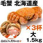かに カニ 蟹 毛蟹 毛がに けがに ケガニ 1kg半 北海道浜茹で毛がに姿 1.5キロ強(500g強×3杯) ボイル冷凍 毛蟹レシピ付き 訳あり無し