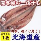 鯖の干物 国産 焼きサバ に) 開きサバの一夜干し 大×1枚(300g前後) 北海道産 真鯖 さば 真空パック
