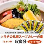 札幌 スープカレー の素 5食分 (送料無料 ポスト投函) 北海道 ソラチ(濃縮タイプ) 札幌 スープカレー 北海道 お土産