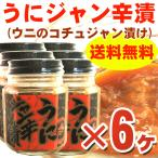 うに ウニ )うにジャン辛漬け 100g×6ヶ(たっぷり600g分) 瓶入り urchin